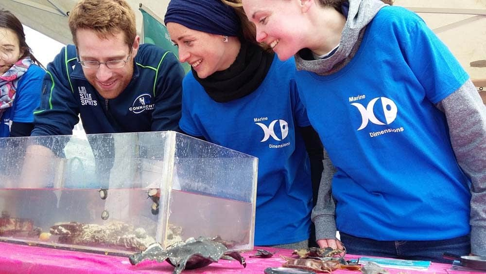 Marine Biology Internships and Conservation Volunteering