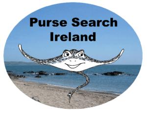 Purse-Search-Ireland