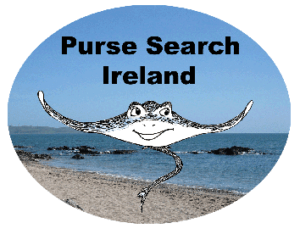 Purse-Search-Ireland-logo-Marine-Dimensions